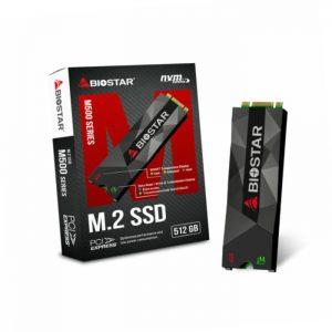 حافظه اس اس دی بایوستار M500 512GB M.2